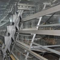 Buy Baby Chick Cage In India Galvanized Baby Chicks Breeding Cage For Poultry Equipments at wholesale prices