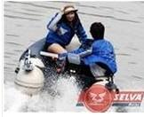 China Horse Power Outboard Engine on sale
