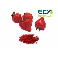 Buy Nutritional Organic Superfood Powder , Micronized Freeze Dried Strawberry Powder at wholesale prices