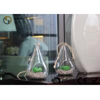 Buy Glass Plant Holders / Glass Plant Terrarium For Indoor Decoration at wholesale prices