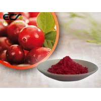 Quality Beauty Effect Organic Food Ingredients Red Fine Oxycoccos Cranberry Extract Powder for sale