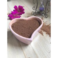 Quality AF02 Alkalized Cocoa Powder Health No Impurities For Ice Cream / Candy for sale