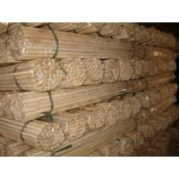 Quality wooden broom handle,wooden broom stick for sale