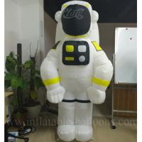 Quality Fire Retardant Inflatable Model for sale