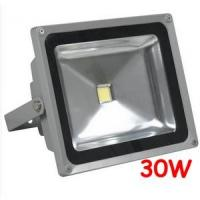 Quality High efficiency IP65 Waterproof 30W Outdoor LED Floodlight bulbs fixtures for Tunnel for sale