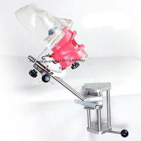 Quality Cheap Dental Dummy Head for Student or Clinic for sale