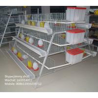 Buy 3 Tiers A Type Layer Hen Battery Coop Chicken Breeding Cage For Baby Chick at wholesale prices