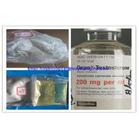 China Muscle Growth Testosterone Steroid Hormone Enanthate Test Enanthate Powder on sale
