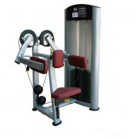 China Indoor Anti Crack Lateral Raise Machine 181KG For Shoulder Pressing on sale