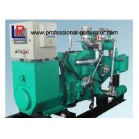 China Electric Small 50kw Wood Gas Power Plant Natural Gas Generators 3 Phase Powered by New Energy on sale