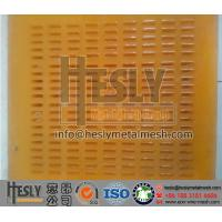 Quality China polyurethane Mining Sieving Screen (Manufacturer) for sale