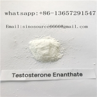 Quality White Cutting Cycle Steroids Powder CAS 315-37-7 Testosterone Enanthate For Fast Muscle for sale