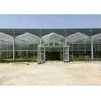 Quality High Strength Plastic Film Greenhouse Galvanized Steel Greenhouse Frame for sale