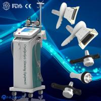 Quality 5 handles fat freezing Cryolipolysis Vacuum cavitation RF machine for lossing fat for sale