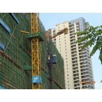 Quality Building Safety 2 Tons Construction Material Lifting Hoist for sale