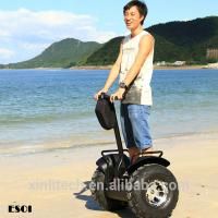 Buy cheap Self balancing electric scooter,China electric chariot with anti-theft lock from wholesalers