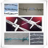Buy high tensile, BWG 16x16 | 12x14, hot dipped galvanized barbed wire for fencing protection at wholesale prices