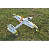 Quality Mini 4ch Sport Plane (Dolphin Glider) 2.4Ghz 4 channel RC Airplane EPO brushless RTF wingspan 555mm for sale