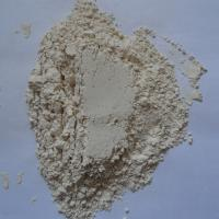 Quality Vital Wheat Gluten Feed Grade for sale
