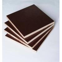 Quality Film Faced Poplar Plywood For Cabinets , Decorative Plywood Sheets Anti Wear for sale