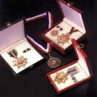 Quality Stamped Zamac Medals for sale