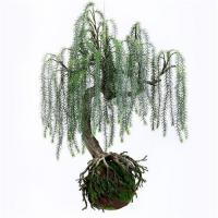 Q117-9 Realistic Artificial Plants Home Decor Plants Weeping Willow With Plastic Base