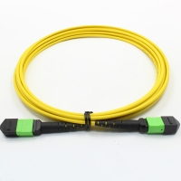 Quality Single Mode 2m MPO Optical Cable 12 Core Bundled 120N for sale