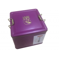 Quality Coffee Packing Square Mini Plain Tin Box With Clip Lid for sale