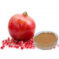 Punica Granatum Extract Cosmetic Raw Materials Ellagic Acid Anti Mutation / Antioxidant
