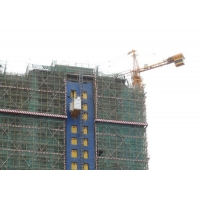 Quality Painted 3000 KG Rack And Pinion Lift Cage Hoist In Construction for sale