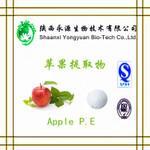 Quality Organic fresh fruit extract powder 5%/8% good quality Apple Cider Vinegar Powder for sale
