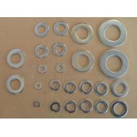 Quality Molybdenum washer,screw for sale