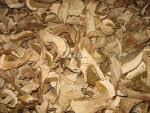 Quality IQF Boletus Edulis slices for sale