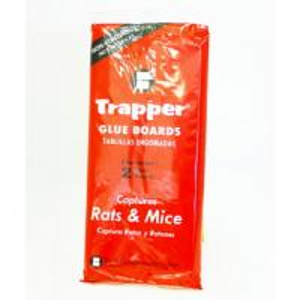 Quality Mouse & Rat Glue Traps for sale