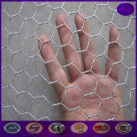 Quality High quality Chicken hexagonal wire mesh , chicken wire netting for bird cages for sale