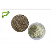 China Plant Source Natural Dietary Supplements Protein Organic Hemp Seed Kernel Protein Powder 50% 60% on sale