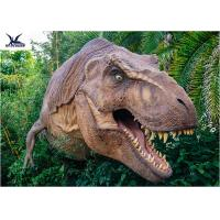 Quality Dinosaur Yard Statue With Realistic Head Model , Dinosaur Garden Sculpture  for sale