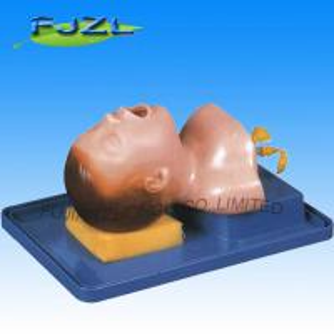 China Newborn Baby Trachea Intubation Model wholesale