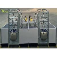 Quality Welding Pig Farrowing Crate , Turn Around Farrowing Crates PVC Fence for sale
