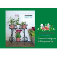 Quality Herbs Graceful Metal Plant Stands / Ladder Plant Stand Powder Coated for sale