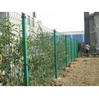 China CE certificated galvanized and PVC coated Welded Wire Mesh Fence wholesale