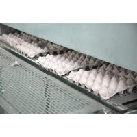 China Pulp Egg / Apple Fruit Tray Moulding Machine With Drying System on sale