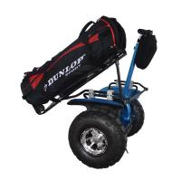 Quality Mini electric golf scooter for adults for sale
