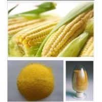 China corn animal feed/corn gluten meal 60% for animal and poultry fodder on sale