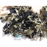 Factory Price Premium NEW CROP Dried White Back Black Fungus Mushroom Whole