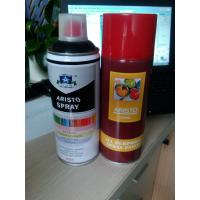 Multi Purposes Aerosol Spray Paint for Interior and Exterior