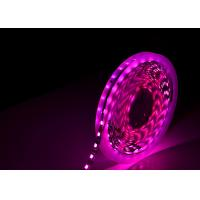 China Changable SMD 5050 RGB LED Strip 4 Color In One RGBW Strip Christmas Decorating on sale