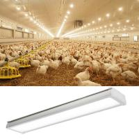 Buy cheap Pig Barn 5000k IP65 Tri Proof Led Light Fixture AC85-265V 90% Driver Efficiency from wholesalers
