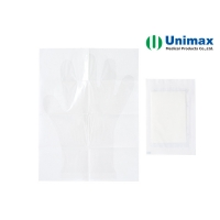 Quality PE EVA Disposable Clear Plastic Gloves for sale