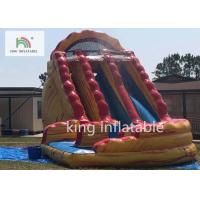Quality Colorful Big Inflatable Dry Slide / Children 'S Bounce House With Slide for sale